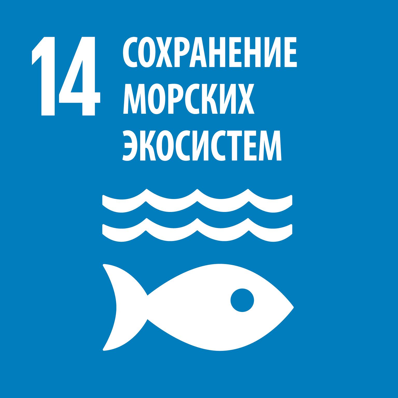 R_SDG_individual_RGB-14