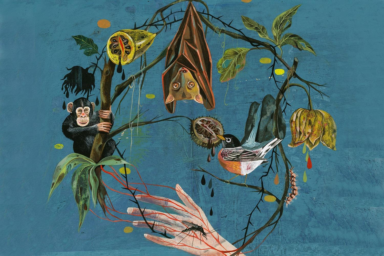 The-Ecology-of-Disease-Olaf-Hajek-Illustration