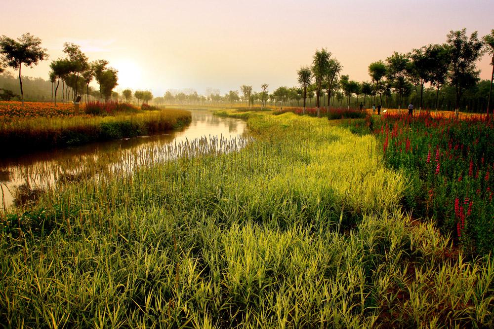 turenscape-sanlihe-river-ecological-corridor-17